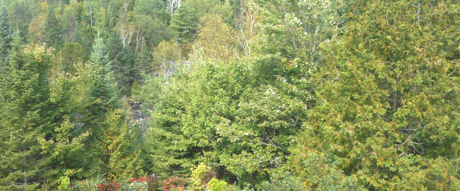 Loft Le Chaleureux à Sainte-Marguerite-du-Lac-Masson