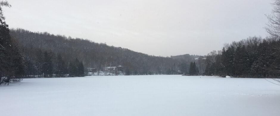 Chalet La Pointe du lac à l'eau calme à La Minerve
