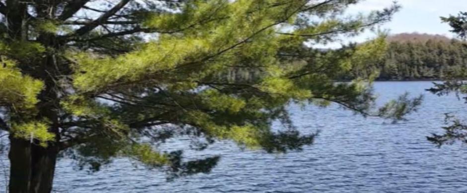 Chalet La Belle sur le lac à Mont-Tremblant